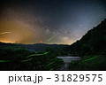 蛍 ホタル ゲンジボタルの写真 31829575