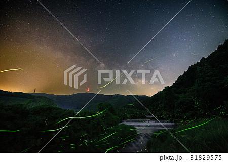 天の川とホタル 31829575