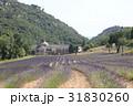南フランス、セナンク修道院 31830260