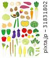 いろいろな野菜 31831802