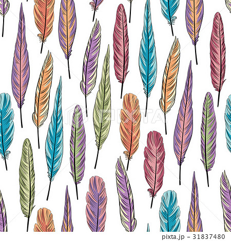 Feather seamless pattern Birds feathers background 31837480