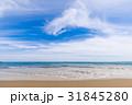 砂浜 青空 雲 海岸 恋路ヶ浜 [愛知県] 31845280