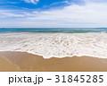 砂浜 青空 雲 海岸 恋路ヶ浜 [愛知県] 31845285
