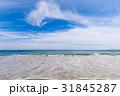 砂浜 青空 雲 海岸 恋路ヶ浜 [愛知県] 31845287