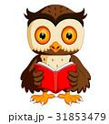 owl reading book 31853479