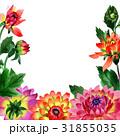 花柄 お花 フラワーのイラスト 31855035