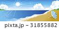 夏 海 南国のイラスト 31855882