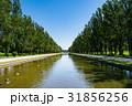 公園 前田森林公園 北海道の写真 31856256