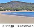 弓ヶ浜 砂浜 海岸の写真 31856987