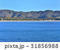 弓ヶ浜 海岸 南伊豆町の写真 31856988