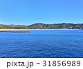 弓ヶ浜 海岸 南伊豆町の写真 31856989