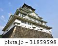 大阪城 天守閣 青空の写真 31859598