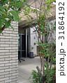 中庭 31864192