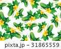 きゅうり キュウリ 胡瓜のイラスト 31865559
