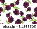 Plum fruits sketch drawing seamless pattern 31865605