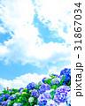 紫陽花 花 青空の写真 31867034