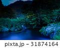 ホタル ゲンジボタル 光跡の写真 31874164