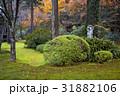 カラーイメージ Japan 日本の写真 31882106