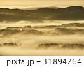 黄金色に輝く朝霧(北海道) 31894264