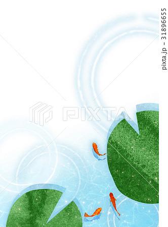 金魚【和風背景・シリーズ】 31896655