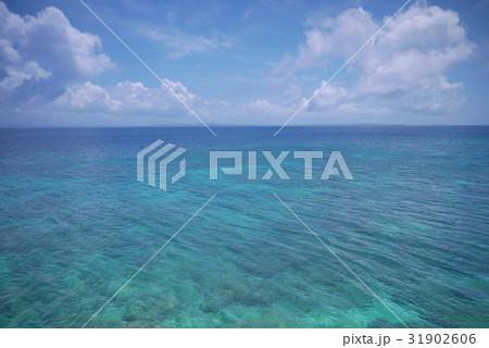 夏の海 31902606