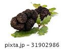 Black truffles and oak leaves. 31902986