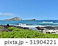 ハワイの休日 31904221