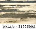 霧 北海道 樹木の写真 31926908