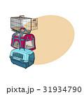 ペット 愛玩動物 運ぶのイラスト 31934790