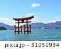 厳島神社 大鳥居 31959934