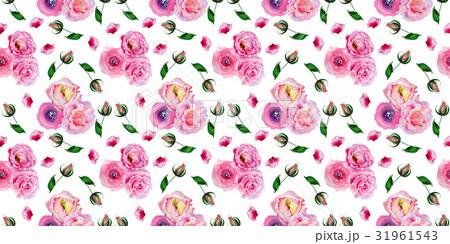 Wildflower rose pattern flower in a watercolorのイラスト素材 [31961543] - PIXTA