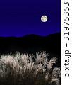 十五夜 満月 中秋の写真 31975353