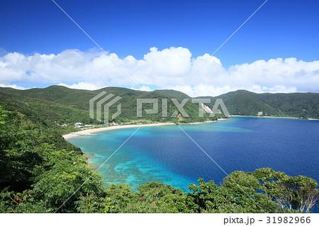奄美大島・加計呂麻島の須子茂 31982966