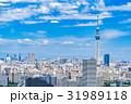 都市風景 青空 初夏の写真 31989118