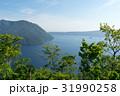 摩周湖 風景 湖の写真 31990258
