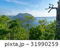 摩周湖 風景 湖の写真 31990259
