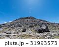 茶臼岳 31993573