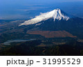 風景 空撮 上空の写真 31995529