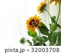 窓辺に飾ったビタミンカラーのルドベキア 32003708