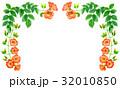 凌霄花 花 フレームのイラスト 32010850