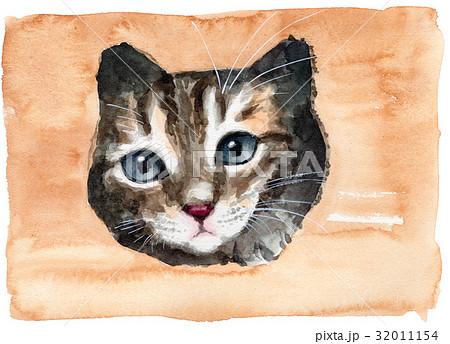 猫型窓から顔を出す子猫 32011154