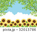 向日葵 32013786