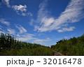石垣島 青空 風景の写真 32016478