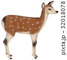 動物 哺乳類 挿し絵のイラスト 32018078