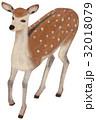 動物 哺乳類 挿し絵のイラスト 32018079