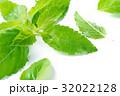 農耕 代わり お香の写真 32022128