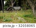 雲龍神社のクスノキ(愛知県名古屋市) 32038065
