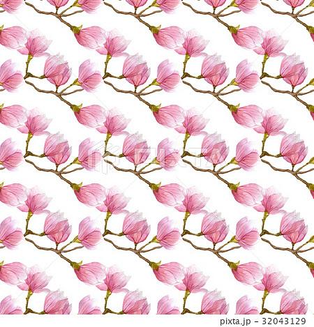 watercolor magnolia flowers textureのイラスト素材 32043129 pixta