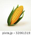 3Dイラスト トウモロコシ コーンのイラスト 32061319
