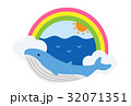 鯨 動物 哺乳類のイラスト 32071351
